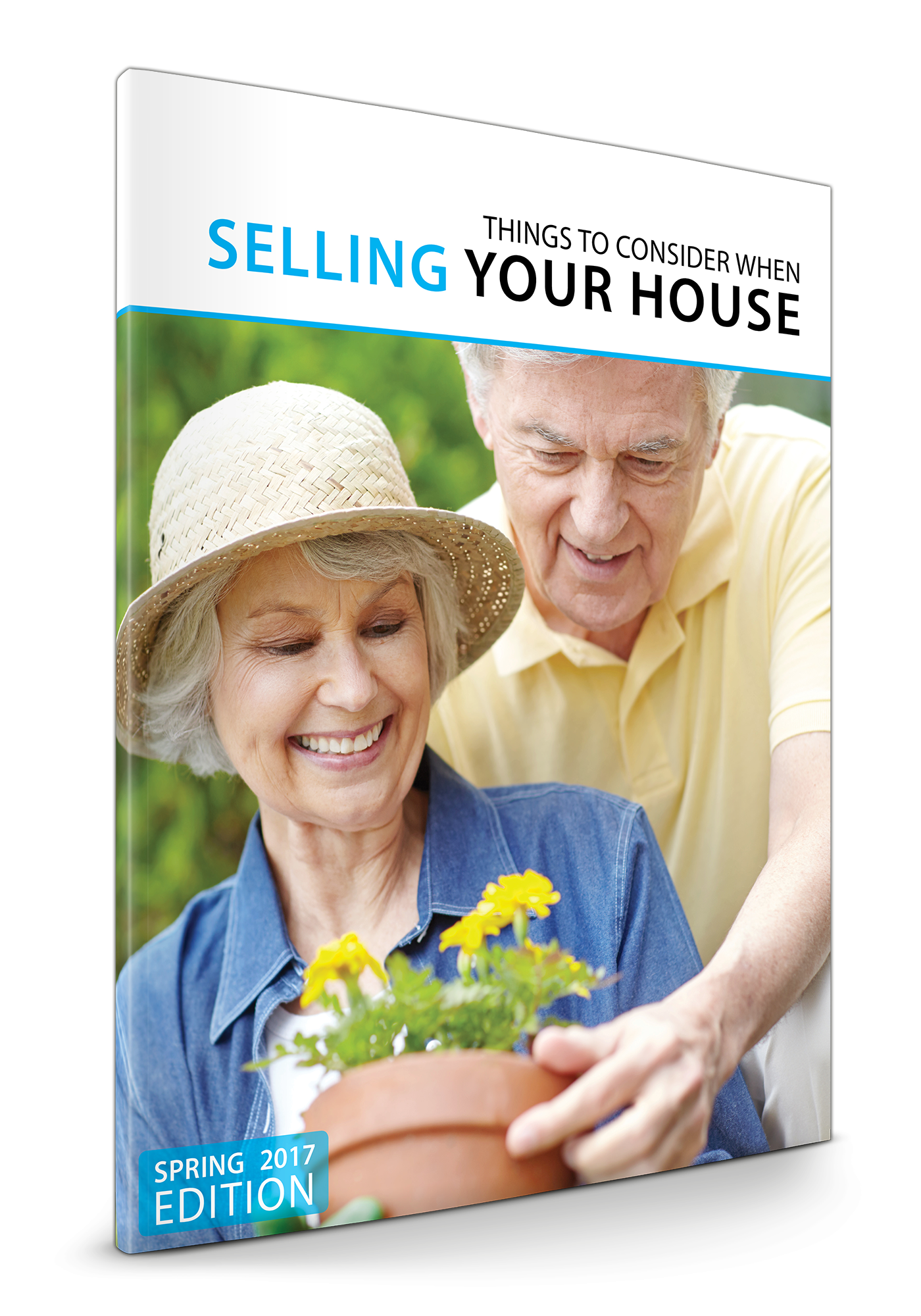 Home Sellers' Guide